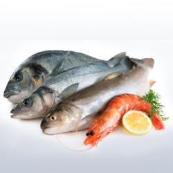 vitaminkészítmények csontokhoz és ízületekhez